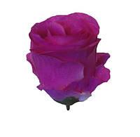 """Искусственный цветочный бутон """"Роза"""" 20 шт. в упаковке(850 мм), шёлк"""