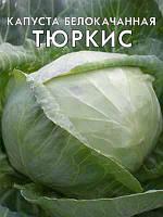 Капуста Тюркиз
