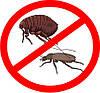 Отпугиватель мышей и насекомых  УЗ-001 (ультразвуковой), фото 3