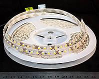 Світлодіодна лента 3528-120-IP64-NW-8-12 R88C0BA, білий-нейтральний