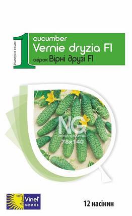 Семена огурцов Верные друзья F1 12 шт, Империя семян, фото 2