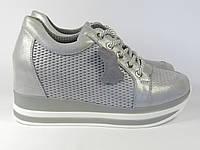 Кроссовки Alpino D18YA-0688-599 37 24 см