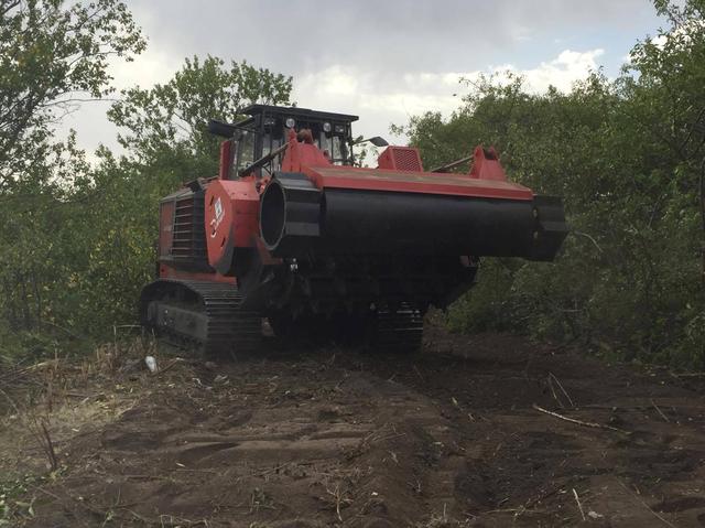 Корчевание поросших территорий - эффективный инструмент увеличения прибыли агропредприятия