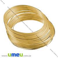 Основа для колье, Проволока с памятью, Золото, 11,5 см, 0,6 мм, 1 виток. (OSN-002683)