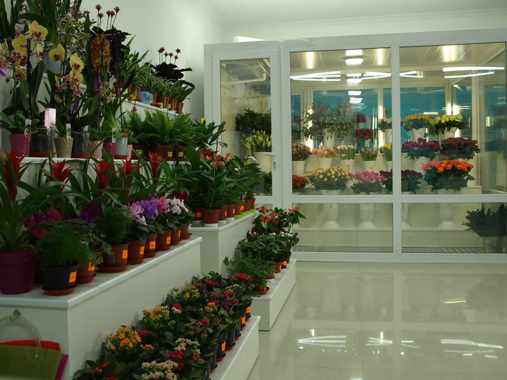 Витрина для экспозиции цветов!