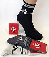 """Мужские носки """"Training Sport Socks"""". Средней высоты. Турция. , фото 1"""