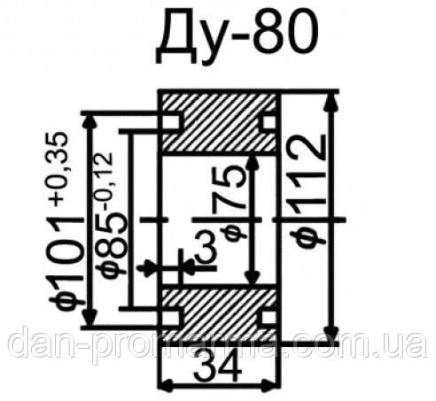 Затвор топливный Ду80 (ЗПТ-80)