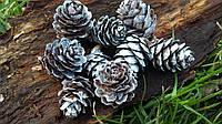Шишки лиственницы натуральные в серебре, 9 шт в упаковке, 30