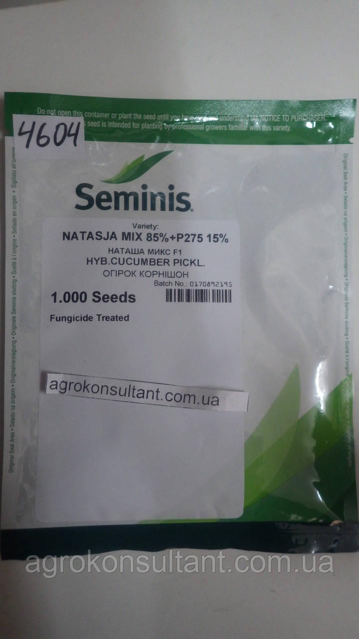 Семена огурца Наташа F1 1000 семян / Seminis ― пчелоопыляемый, ранний гибрид (40-45 дней)