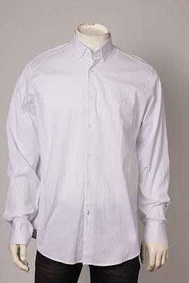 Рубашка мужская Zen-Zen ZEN-ZEN 88067 BEYAZ