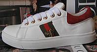 Gucci женские кожаные кеды туфли кроссовки в стиле Гуччи декорированные лентами в полоску