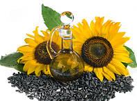 Как выбрать семена подсолнечника и кукурузы?