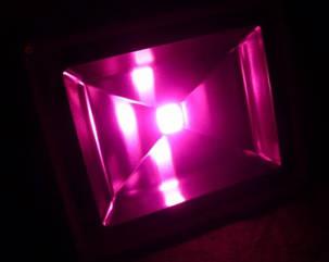 Фито прожектор для растений 50W (full spectrum led) Код.58583, фото 2