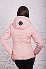 Стильная женская куртка на весну модель 2018 - (кт-239), фото 5