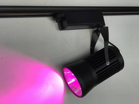 Трековый светильник для растений 20W (full spectrum led) Код.58917, фото 2