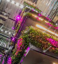 Трековый светильник для растений 20W (full spectrum led) Код.58917, фото 3