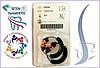 Кольцо для матриц универсальное оранжевое НАБОР | MATRIX RINGS - Garrison Dental Solutions, USA