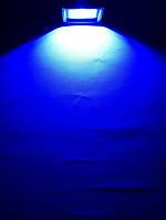 Светодиодный прожектор синий SL-10 10W Код.59059