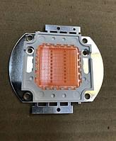 Фито светодиод матричный СОВ 20W full spectrum led (45Х45 mil) Код.59119
