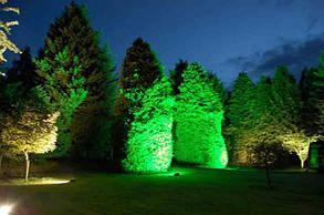 Светодиод матричный СОВ зеленый для прожектора 50W (45Х45 mil) Код.59165, фото 2
