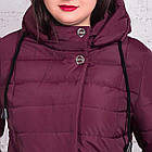 Женская куртка батальных размеров для женщин на весну модель 2018 - (кт-247), фото 2