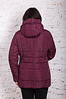 Женская куртка батальных размеров для женщин на весну модель 2018 - (кт-247), фото 5