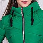 Брендовая женская куртка AMAZONKA на весну модель 2018 - (кт-252), фото 3