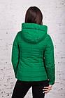 Брендовая женская куртка AMAZONKA на весну модель 2018 - (кт-252), фото 4