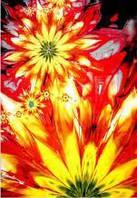 Ковёр Kolibri цветочная абстракция 1.20х1.70 м.
