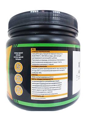 Аминокиcлоты без вкуса BCAA 2:1:1, 500г PROFIPROT, фото 2