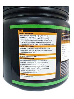 Аминокиcлоты без вкуса BCAA 2:1:1, 500г PROFIPROT, фото 3