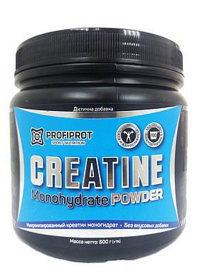 Creatine Monohydrate Powder PROFIPROT 500 g, фото 2