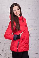 Куртка весенняя для девушек сезона весна 2018 - (модель к-2)
