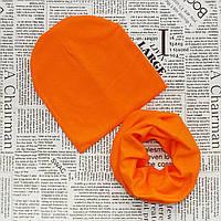 Демисезонный набор: детская шапка и хомут