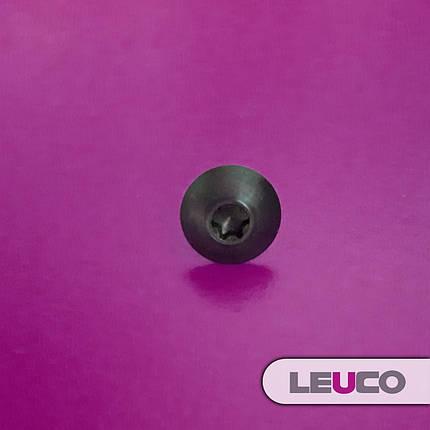 Винты (болты) Leuco с полукруглой головкой для крепления ножей на  фрезе M4x5,9 T15, фото 2