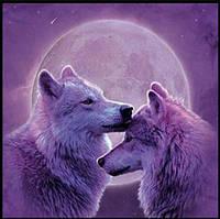 Алмазная вышивка, волки на фоне луны, полная выкладка 20х20 см