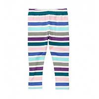 Crazy8 лосины для девочки Stripe Legging
