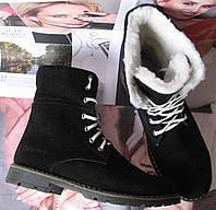 Супер зимние стильные женские сапоги черные ботинки Timberland теплые замша кожа