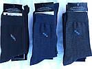 Чоловічі стрейчеві шкарпетки житомир тм Люкс Текстиль р29 мікс, фото 2
