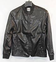 Куртка мужская кожзам молодежная стиль бомбер на молнии размеры L-5XL  купить оптом со склада 7км Одесса