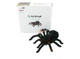 """Животные на радиоуправлении """"Паук-тарантул"""" (Китай)"""