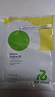 Семена огурца Кибрия F1 (Kybria RZ), 1000 сем. — партенокарпический корнишон