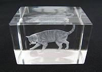 Котик сувенир хрустальный голограмма