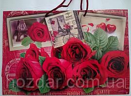 Пакет подарочный бумажный большой горизонтальный 36х25х10 (26-042)