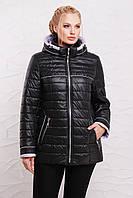 Демисезонная куртка  модель 210,  5 расцветок ( 52-64) черный