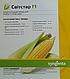Семена кукурузы  Свитстар F1 1 кг  6250 семян Syngenta, фото 2