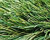 Искусственная трава (футбол, 2-х цветная), 40 мм