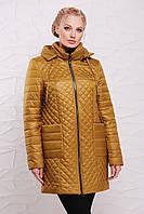 Демисезонная куртка  модель 205,  7 расцветок ( 52-62) горчица
