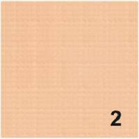 Компактная крем-пудра (2 в 1) 02 код mp-0150