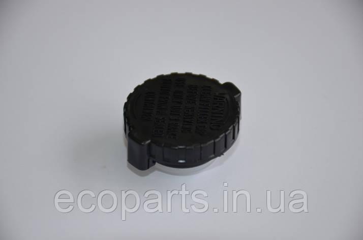 Крышка бачка тормозной жидкости Nissan Leaf, фото 2